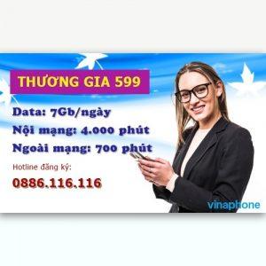 gói thương gia 599 vinaphone